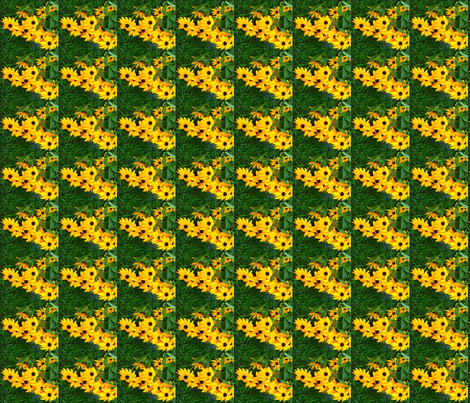 s_edit2_Crop_b_Black_eyed_Susan_sq_ex_c fabric by khowardquilts on Spoonflower - custom fabric