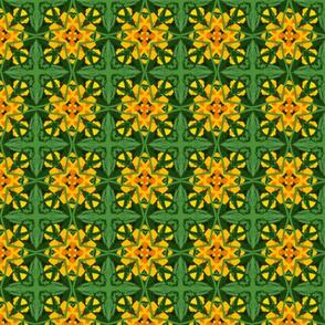 Crop_l_crop_2x2_b_45m_crop_a_Picnik_collage