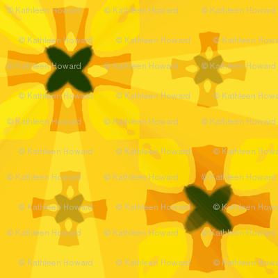 cir_splash_2_crosses_12_Picnik_collage