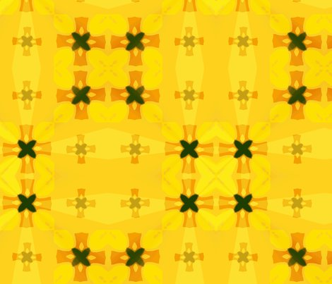 Rcir_splash_2_crosses_12_picnik_collage_shop_preview