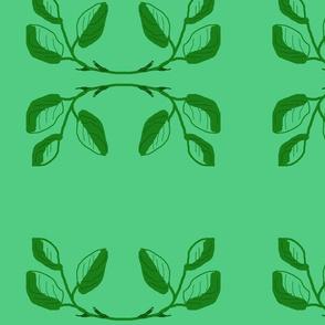 single_roses_Picnik_collage-ch-ed