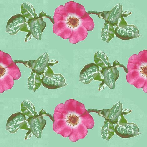 pink_single_rose_leaves_Picnik_collage-ch-ch fabric by khowardquilts on Spoonflower - custom fabric