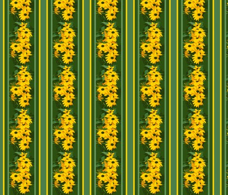 Rblack_eyed_susan_stripe_3_august_1_2009_012_shop_preview