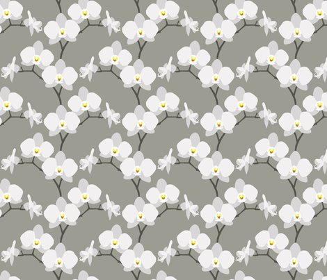 Rrrorchids_spoonflower_shop_preview