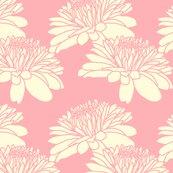 Rrchrysanthemum_pink_neapolitan_spoonflower_shop_thumb