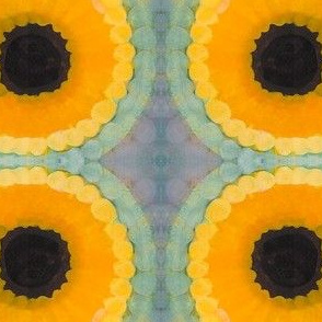 Circles and Sun