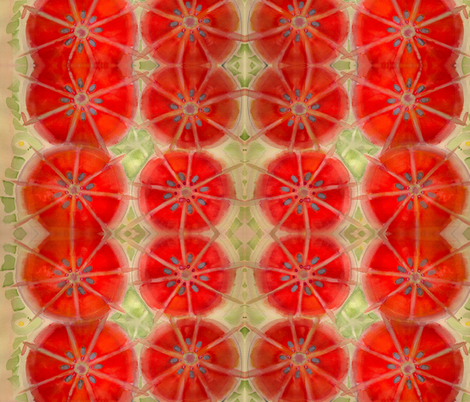 Citrus fabric by angella_meanix on Spoonflower - custom fabric