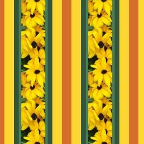 narrow_stripe_Picnik_collage
