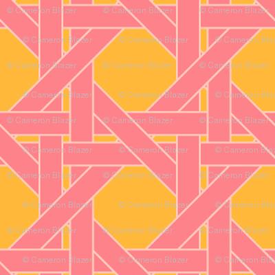 Ice Cream Social :: Rainbow Sherbet :: Sugar Cane