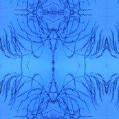 Rpost_wdetail_fade_aperagus_fern_003_shop_thumb