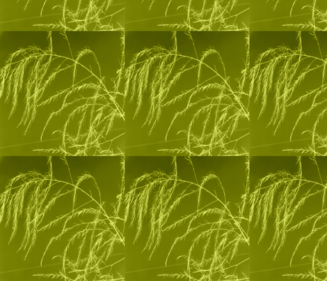 invert_tint_aperagus_fern_003 fabric by khowardquilts on Spoonflower - custom fabric