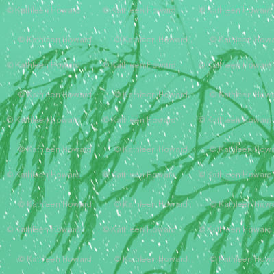 snow_post_aperagus_fern_003