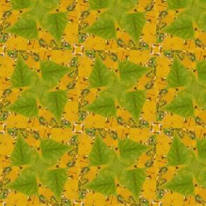 birch_leaves_crop_2_post_Picnik_collage