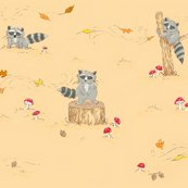 Rrjeremy_raccoon_fabric_shop_thumb