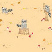 jeremy raccoon (fuzz)