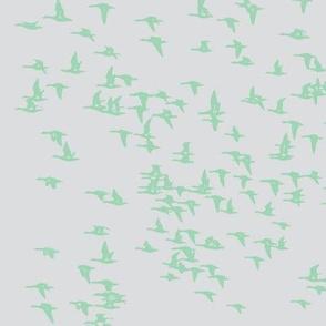 flock_birds