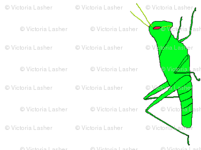 vll_virginia_s_grasshopper_stripe
