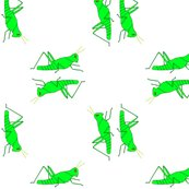 Rvll_viginia_s_grasshopper_square_shop_thumb