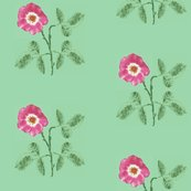 Rrose_3_leaves_db_picnik_collage_shop_thumb