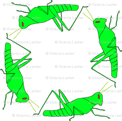 vll_virginia_s_grasshopper_check