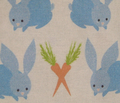 Rrbunny_baby_teal_jpg_comment_15638_thumb