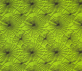 Rspideryweb-greenblack_comment_12052_thumb