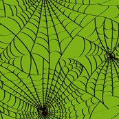 Rspideryweb-greenblack_shop_thumb