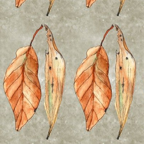 wiccked leaves