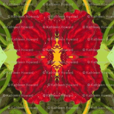 2x2_red_mirrored_flowerPicnik_collage-ch
