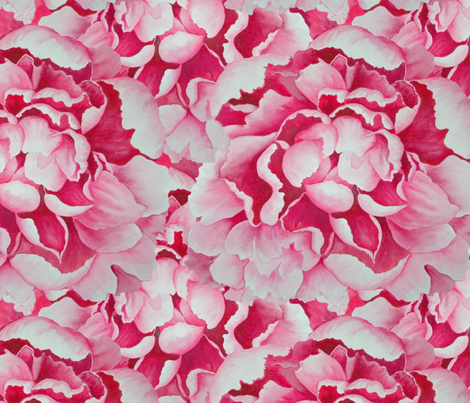 Pink Peonies fabric by helenklebesadel on Spoonflower - custom fabric