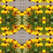 Copy_of_august_1_2009_010_ed_shop_thumb