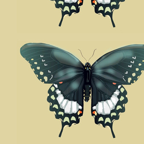 Swallowtail_pillow