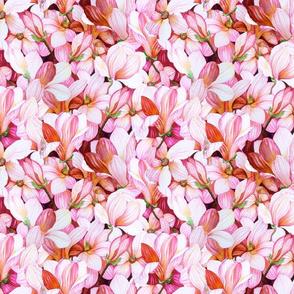 Magnanimous Magnolias