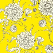 Rlabdaisyyellow_shop_thumb