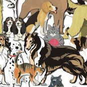 Rcats_and_dogs_shop_thumb