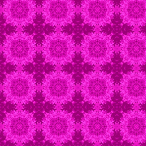 qt_b_2x2_fushia_aster_45_Picnik_collage