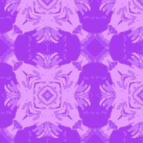 crop_aster_45_purple_Picnik_collage-ch