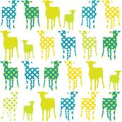 Lambs_Citrus