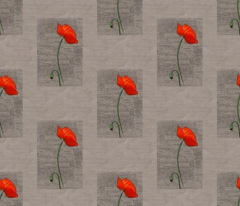Rfenced_in_poppy_redder_shop_preview