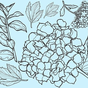 Blue Floral Hydrangea Toile