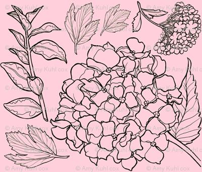 Pale Pink Floral Hydrangea