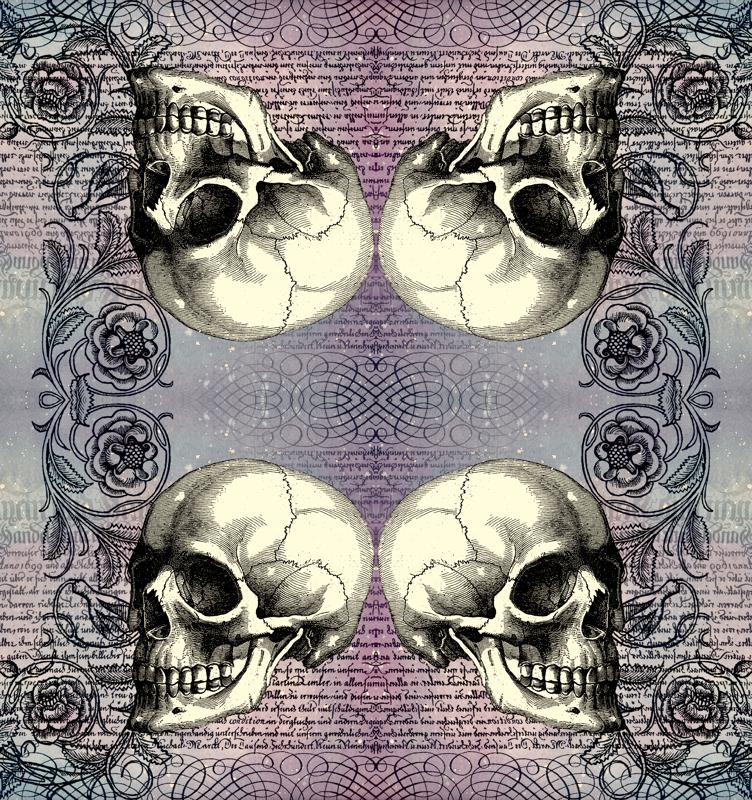 Cute Skulls And Roses Wallpaper Cute Skulls And Roses