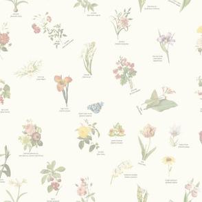 floral01_cream