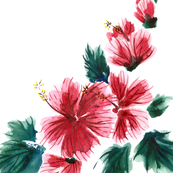 Hawaiian Hibiscus Watercolor