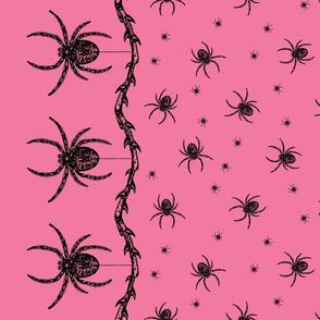 Spider Border (pink)