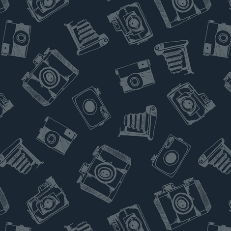 Cameras fabric by kat_v_l_wright on Spoonflower - custom fabric