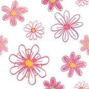 Rdaisies-crayons_shop_thumb