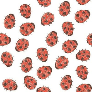 Ladybug Party