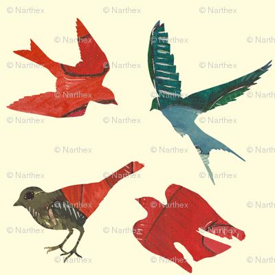these birds