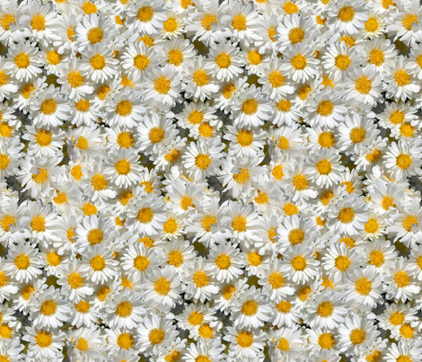 Daisy garden fabric by hannafate on Spoonflower - custom fabric